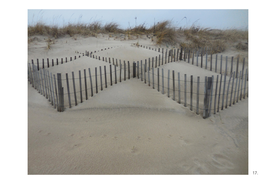 Beach Snow Fencing