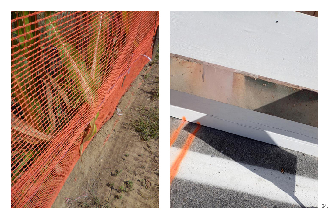 Corn Sawhorse Orange Lines
