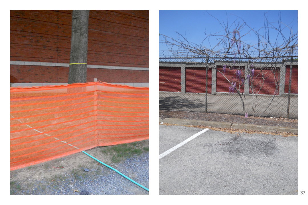 Orange Fencing Hose Wisteria Storage